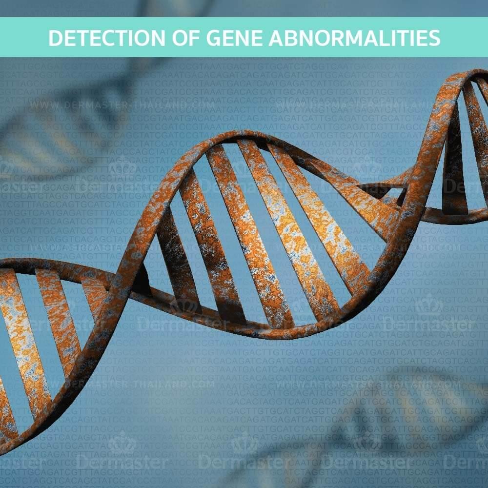 dermaster-genatic-test-en-02