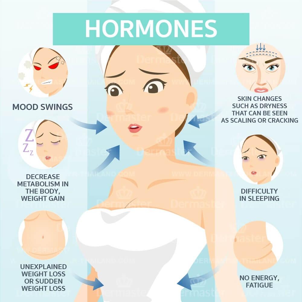 dermaster-hormones-en