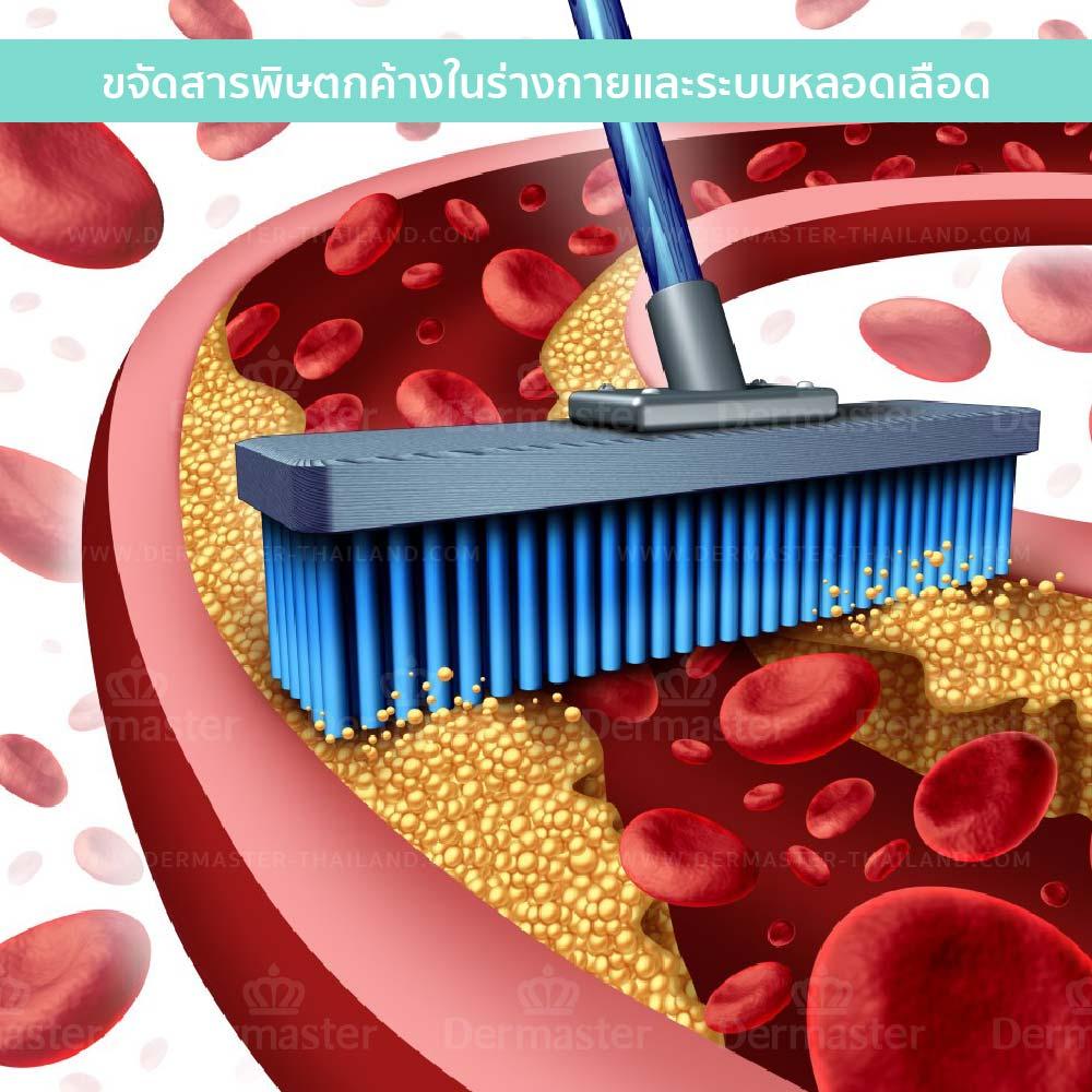 คีเลชั่น (Chelation Therapy) 8